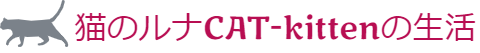 猫のルナCAT-kittenの生活